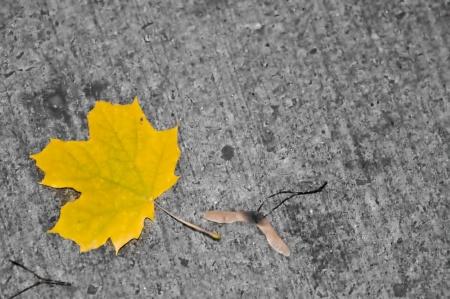 Купить бетон осенью – в чем важность осенних строек